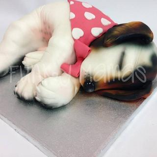 Sleeping Jack Russell