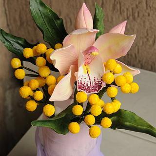 cymbidium orchid and silver wattle