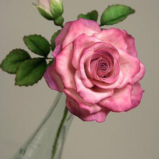 Sugar Rose - Cake by Michaela Fajmanova