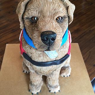 Bob the Service Dog - Cake by Kim