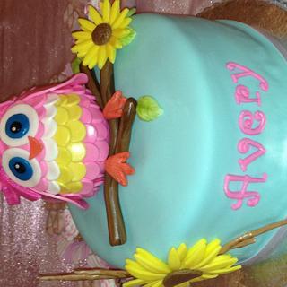 """Avery"" Owl cake - Cake by Kim Hood"