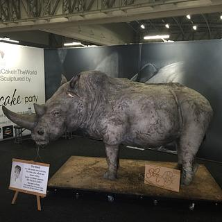 Life Size Rhino Cake