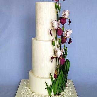 Cake with iris