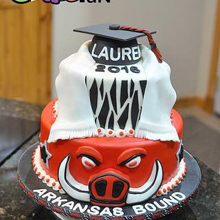 Arkansas Razorback Graduation Cake