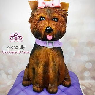 Birthday Dog Cake