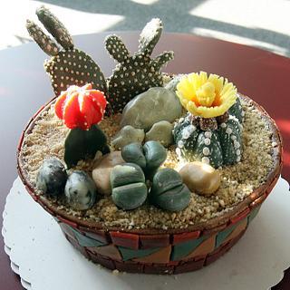 Pot with cactus