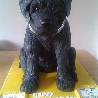 Lifesize Labrador Puppy Cake