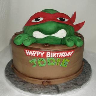 teenage mutant hero turtle  cake