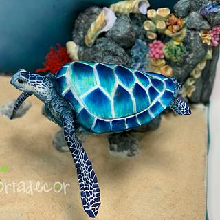 Flying turtle cake