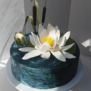 Water lily cake - Cake by Darina