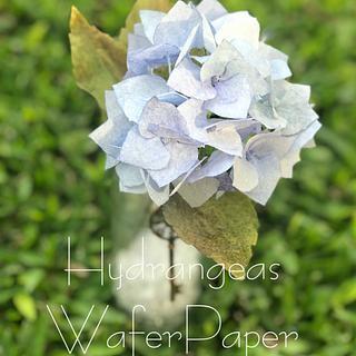 Hydrangeas wafer Paper