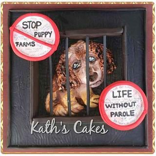 Animal Rights Collab