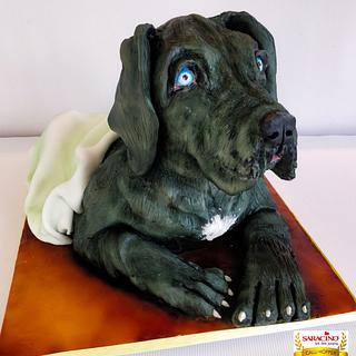 Great Dane puppy cake