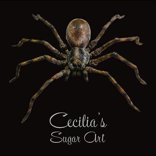 Spider Cake Topper - Cake by Cecilia