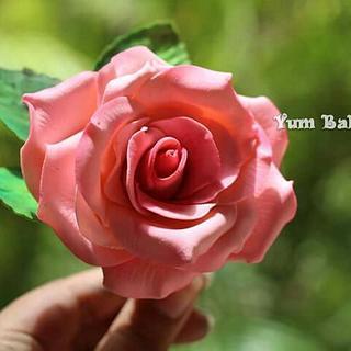 Gumpaste Rose.....