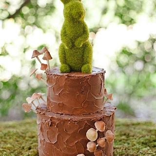 Woodsy Cake