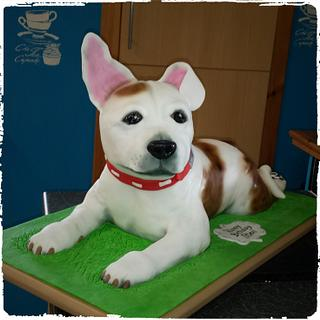 3D Staffordshire Bull Terrier  - Cake by Stef and Carla (Simple Wish Cakes)