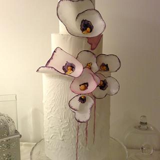 Pansé, wafer paper flowers
