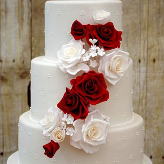 Red and white roses and swiss polka-dots