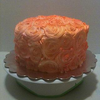 airbrushed rosette cake