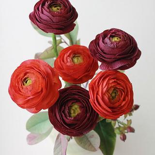 Ranunculus ).)