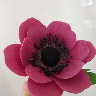 Ricepaste anemone - Cake by Ebru eskalan