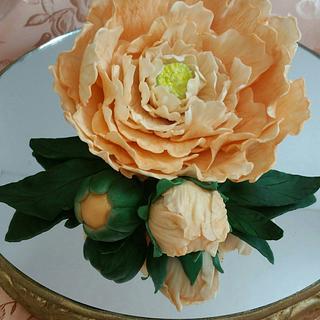 Peach Peony - Cake by eiciedoesitcakes