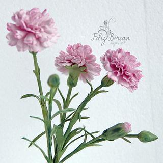 Sugar Flowers (Sugar  Carnation)