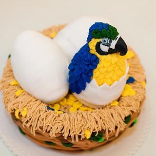 babyparrot cake