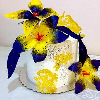 cake wafer paper