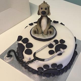 Vet/Animal themed Cake - Cake by Woody's Bakes
