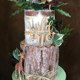 Wild One - Cake by The Noisy Cake Shop