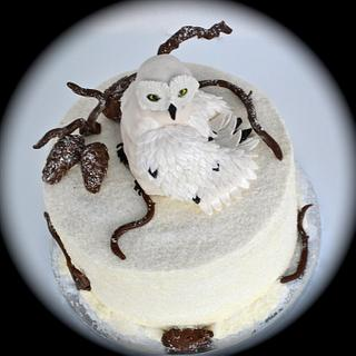 Winter Alaskan Snow Owl Cake
