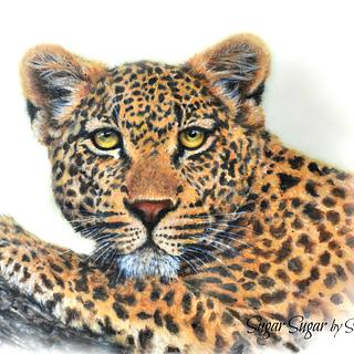Leopard (Spectacular Pakistan Collaboration)