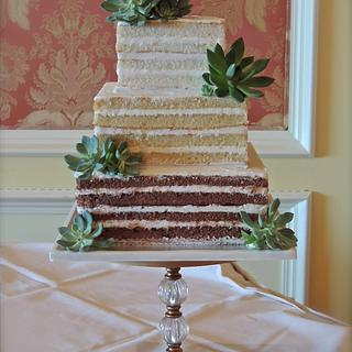Ombre Naked cake with succulents