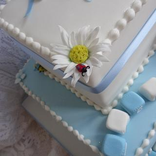 Bunny, Bugs and Blocks for a Boy's Christening