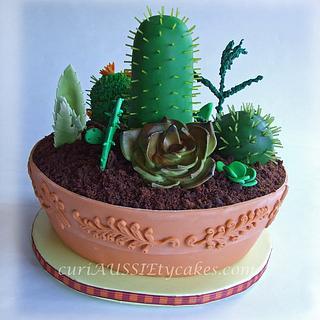 Cactus / Succulant plant cake