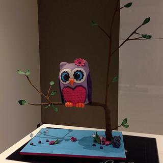 Owl girly