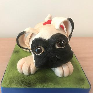 Pero Pug