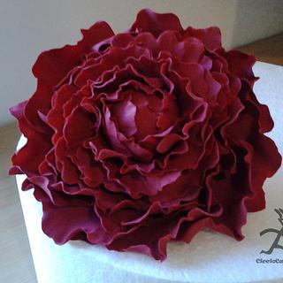 Large Peony Flower made using homemade $2 cutters with tutorial for cutters & flower