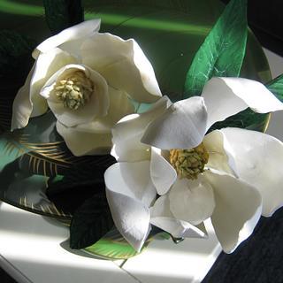 Gumpaste Magnolia's