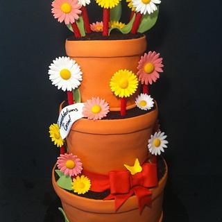 Pot of Daisies Cake