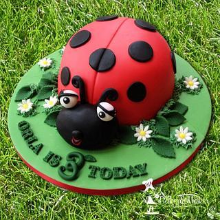 Ladybird 3rd birthday cake