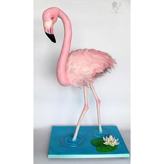Let's Flamingle - Cake by Antonia Lazarova