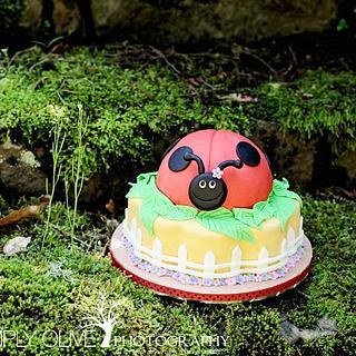 Ladybug cake  - Cake by Reni Hendra