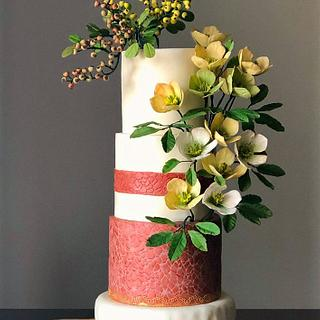 Winter Helleborus niger and berries cake!...