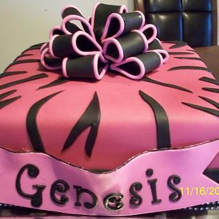 Fushia/Zebra Cake
