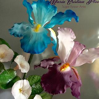Iris and airbrush