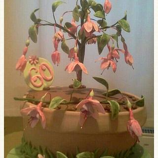 Fuchsia pot birthday cake