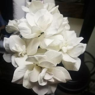 Gardenias pasta azúcar💞💞💞